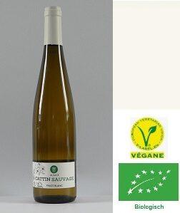 Pinot Blanc Sauvage